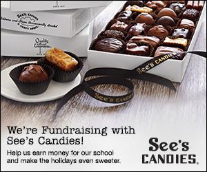 fundraising materials